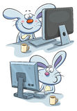 Bunny Working at computer Royalty Free Stock Photos