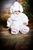 bunny2复活节 库存照片