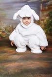 bunny5复活节 免版税库存照片