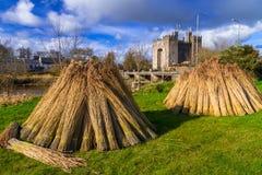 bunratty замок clare co Ирландия clare Стоковое Изображение RF