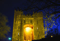 Bunratty Castle Stock Photo