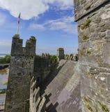 Bunratty Castle & Folk Park Stock Image