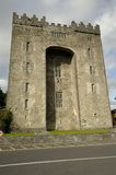 Bunratty Castle (Ireland) Royalty Free Stock Photo