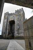 bunratty castle ireland Στοκ Φωτογραφία