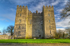 bunratty slott clare co Arkivbild