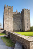 bunratty slott clare co ireland Royaltyfri Fotografi