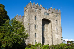 bunratty slott ireland Royaltyfria Bilder