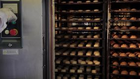 Buns baked in oven in bakery production industry, two devices with. Shelves, one with raw rolls, second ready-made bread small loaves. man presses button to stock video
