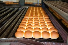 Buns of bread in the factory. Buns of bread being made in a factory Royalty Free Stock Images