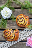 Buns brioche in shape of snail Stock Images