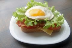 Fried eggs sandwich with bacon and cheese stock photography