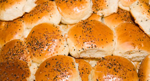 Buns fresh. Out of oven Stock Photography