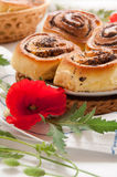 Buns with poppy seeds Royalty Free Stock Photography