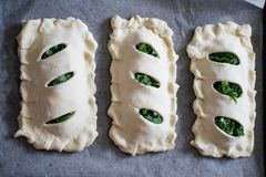 Buns of puff pastry with sorrel close-up. Homemade cakes with greens during cooking. Buns of puff pastry with sorrel close-up. Homemade cakes with greens stock photos