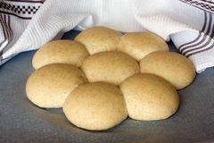 Buns from wholemeal. Home made buns from wholemeal flour - before baking Royalty Free Stock Photo