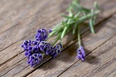 Bunsh van lavendelbloemen op hout Royalty-vrije Stock Fotografie