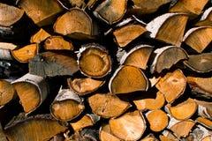 Bunt av avverkade träd, timmer, hög av vedträt Royaltyfri Foto