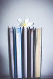 Bunt av böcker och frangipaniblomman Royaltyfria Foton