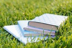 Bunt av böcker på gräset Royaltyfri Fotografi