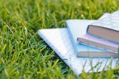 Bunt av böcker på gräset Arkivfoto