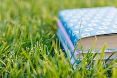 Bunt av böcker på gräset Arkivbild