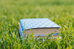 Bunt av böcker på gräset Royaltyfri Bild