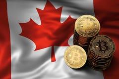 Bunt av Bitcoin mynt på kanadensisk flagga Läge av Bitcoin och andra cryptocurrencies i Kanada Royaltyfri Foto