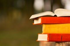 Bunt av boken och den öppna inbunden bokboken på den suddiga naturlandskapbakgrunden Kopieringsutrymme, tillbaka till skolan sax  Arkivfoto
