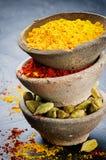 Bunt av den färgrika blandningen av kryddor royaltyfria bilder