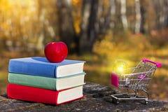 Bunt av färgrika böcker och ett äpple på den gamla trätabellen i en mörk skog på solnedgången Shoppingvagn och ljus kula Arkivfoton
