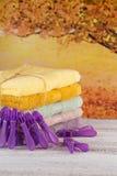 Bunt av färgrika badlakan på ljust träbräde royaltyfri fotografi