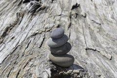 Bunt av fyra släta stenar på en stor drivvedjournal royaltyfria bilder