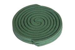 Bunt av gröna myggaCoils royaltyfria bilder
