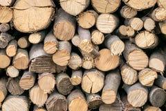 Bunt av huggen av wood texturbakgrund för brand Royaltyfri Bild