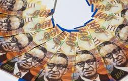 Bunt av israeliska pengarräkningar av 100 sikel - bästa sikt Royaltyfri Bild