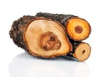 Bunt av klippt trä för journalbrand från träd Royaltyfri Bild