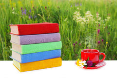 Bunt av mångfärgade böcker på tabellen och en röd kopp av varmt te på ett tefat på bakgrunden av den härliga naturen Arkivbild