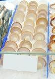 Bunt av ny kammusslaskärm på fiskmarknaden med vit etikett a arkivbilder