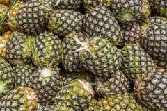 Bunt av nya ananors på en marknad Arkivbilder