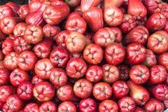 Bunt av rosa äpplen Fotografering för Bildbyråer