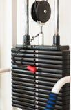 Bunt av rostiga metallvikter i idrottshallbodybuildingutrustning Arkivfoton
