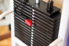Bunt av rostiga metallvikter i idrottshallbodybuildingutrustning Royaltyfri Fotografi