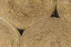 Bunt av runda haybales 2 Arkivfoton