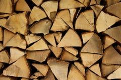 Bunt av tr? arkivbild