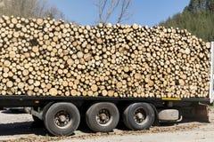 Bunt av vedträ på en lastbil royaltyfri bild