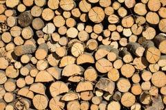 Bunt av wood journaler Royaltyfri Foto