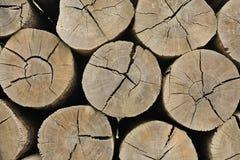 Bunt av wood poler Fotografering för Bildbyråer
