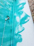 Bunt geen blaue Frauengesichtsgraffiti im Hinterhof lizenzfreie stockbilder