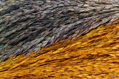 Bunt von getrocknetem Ohr der Reistapete Stockbilder
