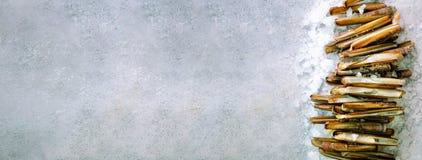 Bunta gruppen av nya rakknivmusslor på is, konkret bakgrund för grå färger Kopieringsutrymme, bästa sikt, baner Royaltyfri Fotografi